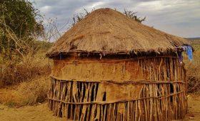 case massai